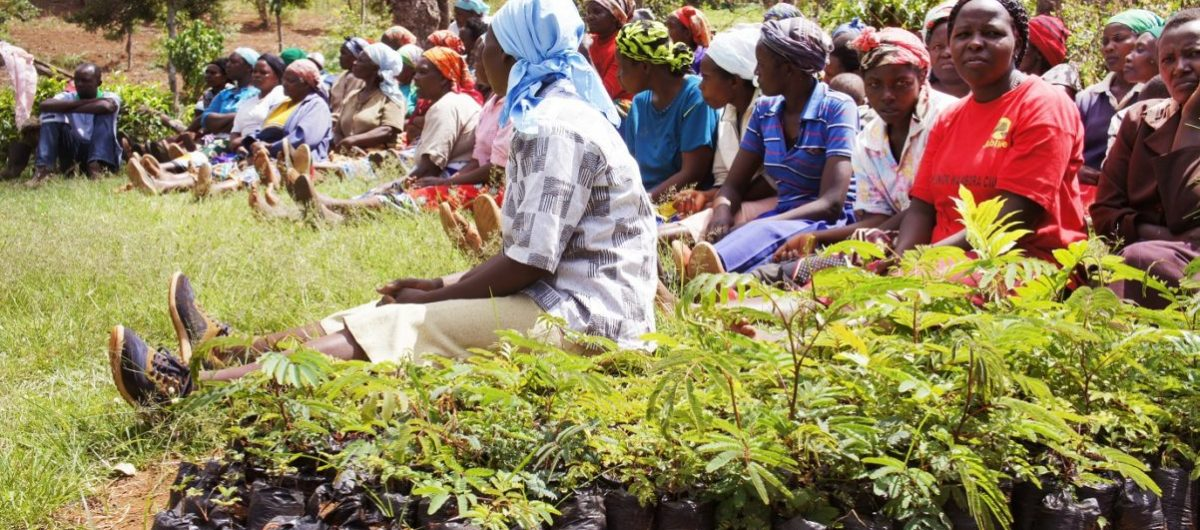 WOMEN LOBBY PUSH FOR IMPLEMENTATION OF 2016 ACT TO ENABLE WOMEN OWN MATRIMONIAL LAND