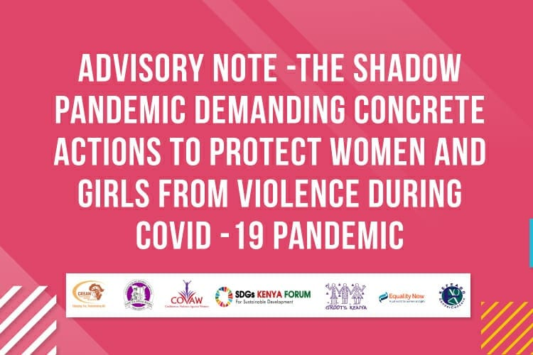 Advisory Note – The shadow pandemic demanding concrete actions to protect women and girls from violence during COVID 19 pandemic